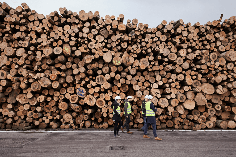 Production Partners Lenzing and Muntagnard founders in front of a factory wood stack, wearing vests and inspecting wood for t-shirt LEGNA